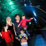 Deep sea World North Queensferry
